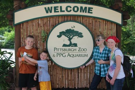 zoo 003
