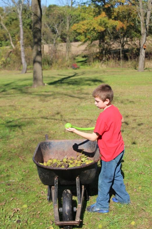 Tyler tossing walnuts.