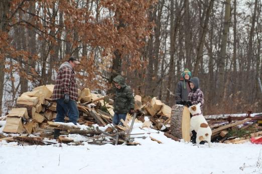Splitting wood..