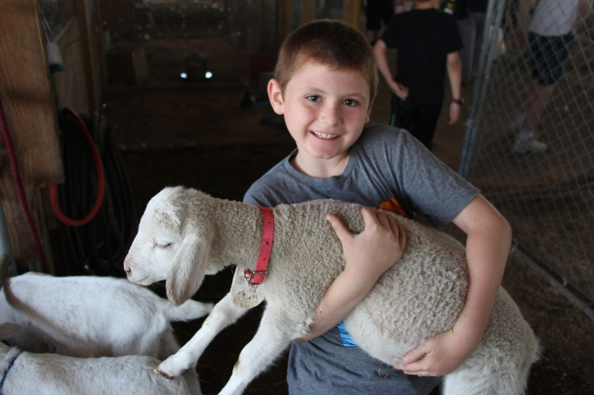 Tyler and a baby lamb.