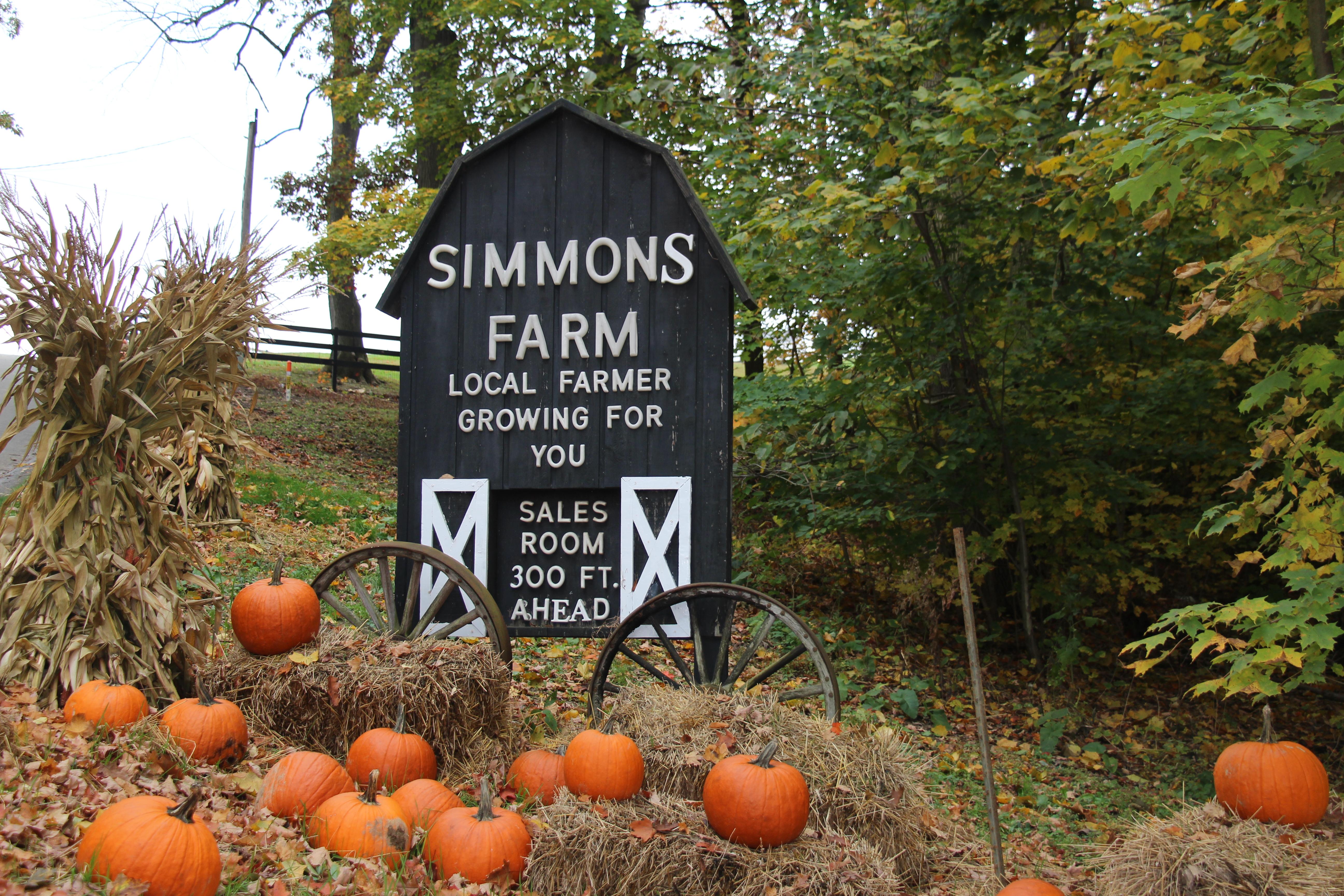 Shannon Writes...: Simmons Farm.