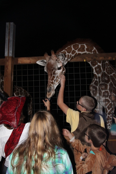 Levi, the giraffe, was another favorite of the kids!