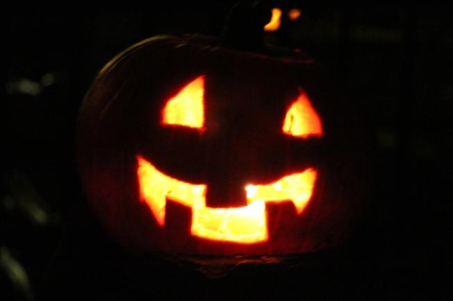 Ozzie's pumpkin