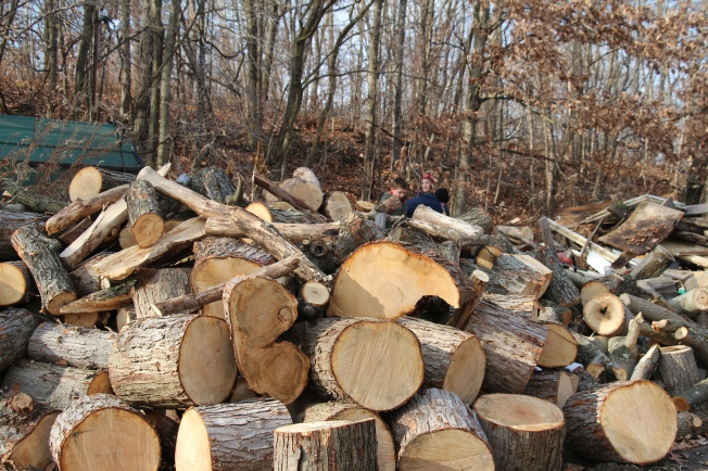 Our pile we split and stacked.