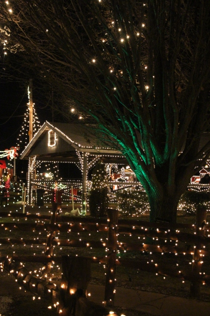 The lights in the Christmas village were beautiful!