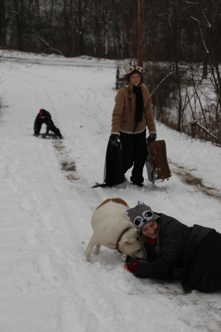 "Gracie being chased by Winnie, our bulldog, as she sled downhill while Molly totes up our ""new sled."""
