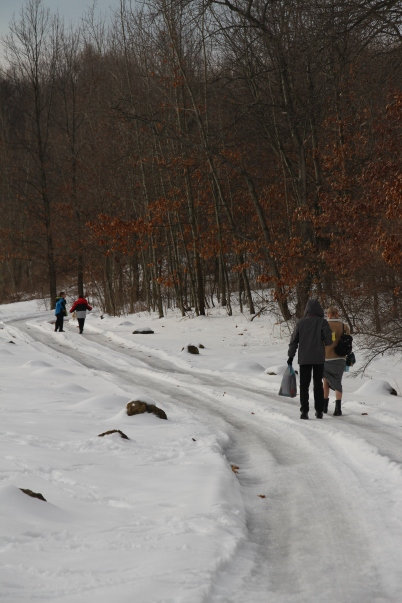 I am grateful for healthy legs. There was a time in my life that hiking to the end of the driveway would have been impossible. Although I can't say I am grateful for an ice covered driveway that requires us to park at the bottom and hike in, I am grateful for the ability to do it.