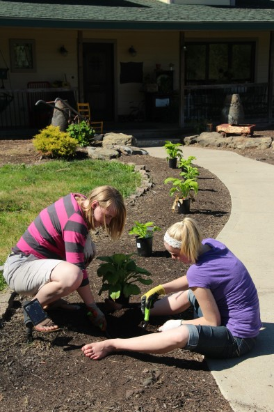 The girls planting Hostas