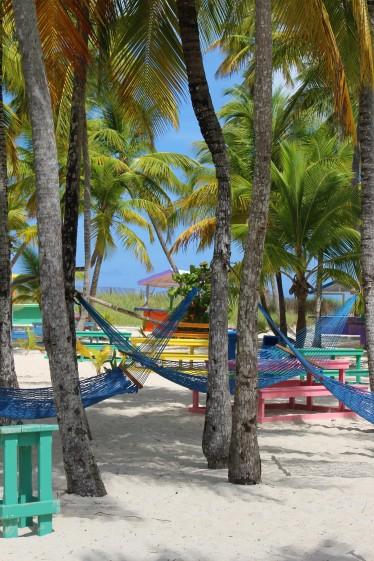 A grove of hammocks to sleep the day away...