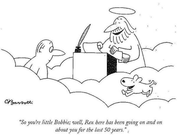 barsotti-dog-heaven